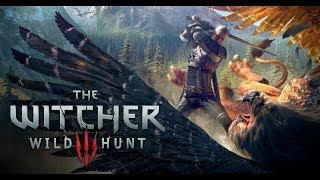 Obtendo Informações - The Witcher III #02