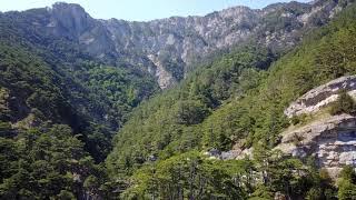 Горы леса-природы