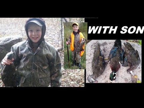 Pass Shooting Wood Ducks, Grouse Hunting With 8 Year Old Son 2017: The Skirmish Line