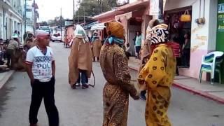 Danza de los capoteros 05/05/17.. Quechultenango Gro.