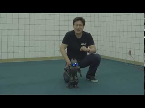 CHAPPIE- A Real CHAPPIE?  Dr  Dennis Hong And DARwin Robot
