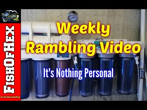 Weekly Rambling Video | Our YouTube Community Is Changing | Garden Update