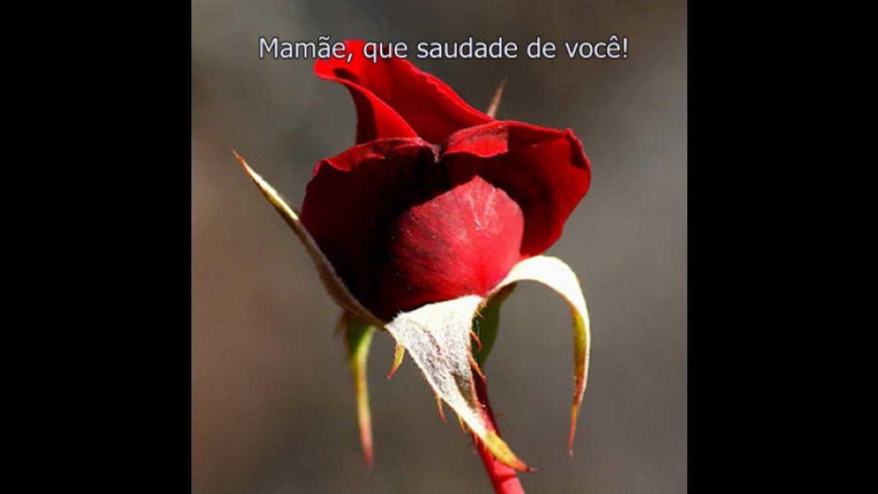Saudades De VocÊ Amor Youtube: Mamãe, Que Saudade De Você! (Léia Carmona)