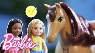 Barbie and Chelsea Dolls' Baby Horse Can't Sleep   Barbie