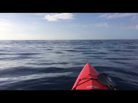 Kayak Whale Watching on Kauai with Lifeproof