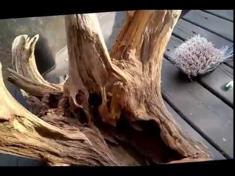 Cleaning a large driftwood root stump for aquarium for How to work with driftwood