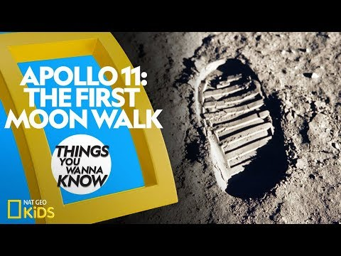 Apollo 11 - The First Moon Walk | THINGS YOU WANNA KNOW