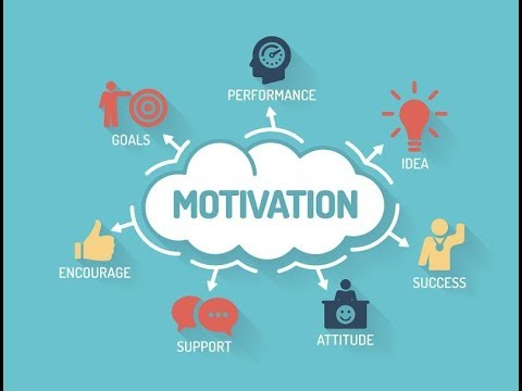 Motivation Short Video And Live Chat Wt Life & Business сoach Nicolae Cirpala Consultant Сounselor