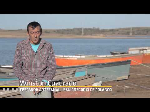 Uruguay Agrointeligente - Documental sobre Pesca