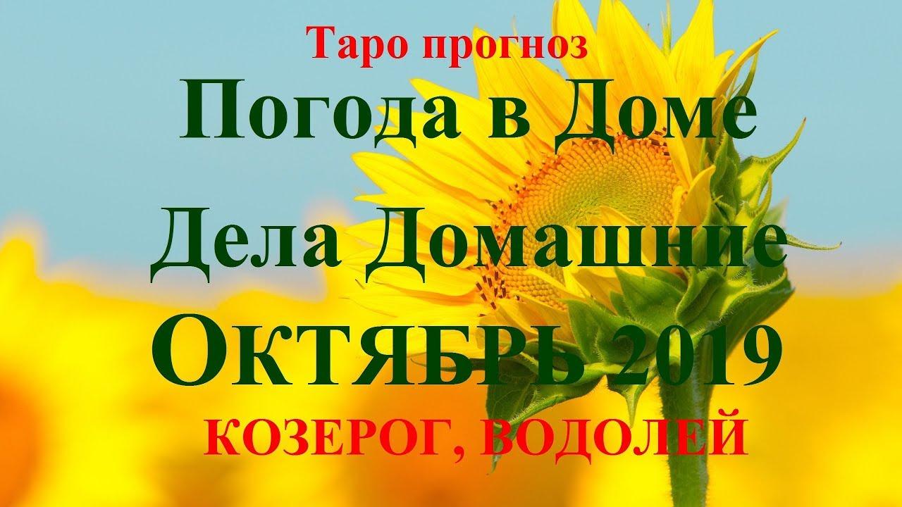 ДЕЛА Домашние – КОЗЕРОГ, ВОДОЛЕЙ — октябрь 2019. Прогноз Tarot.