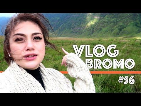 Vlog Jalan2 & Sunrise di Bromo #56