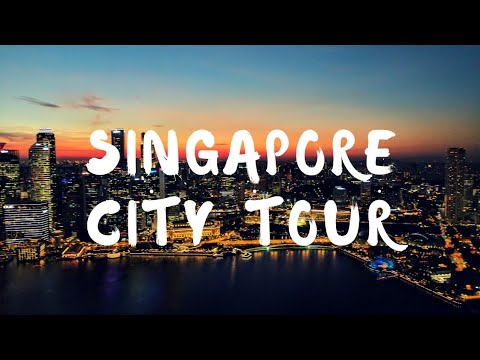 Singapore City Tour | Merlion | Singapore Flyer | Gardens by the Bay | Marina Bay sands