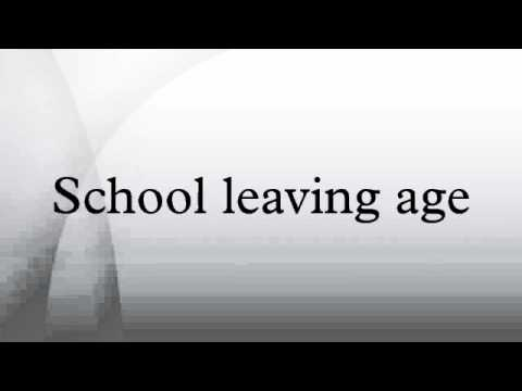 compulsory school leaving age of 17 11 the compulsory school leaving age in new south wales 8 12 why was the school leaving age raised to 17 years of age 8 13 which young people were impacted on by the change 9.