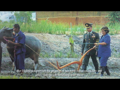 Biography of Her Royal Highness Princess Maha Chakri Sirindhorn