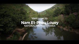 ວິດີໂອ ຍາວຂອງ ແຫຼ່ງທ່ອງທ່ຽວລ່ອງເຮືອເບີ່ງສັດປ່າແມ່ນ້ຳເນີນ  Night Safari in Laos (Lao version)