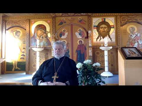 Ortodoksia