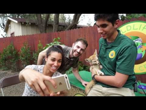 What is Wildlife Learning Center?