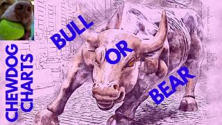 Is The Stock Market Going To Plunge, Or Is The Stock Market Going To Rebound?