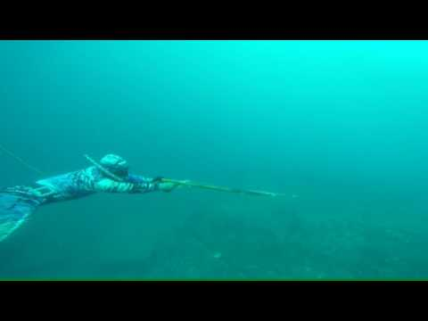 Spearfishing indonesia, aceh besar..