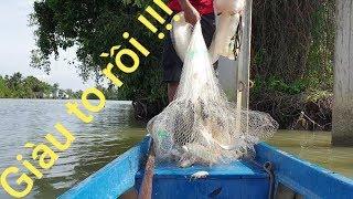 Mồi chày cá mè vinh từ mồi câu. Hốt trọn ổ cá trong 1 cú quăng chày | Săn bắt SÓC TRĂNG |