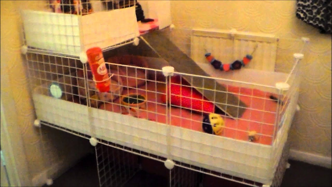How i built guinea pig 2x3 c c cage with stand and loft for Diy c c guinea pig cage