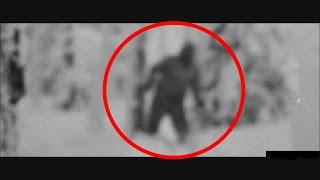 Russian Yeti - The Dyatlov Pass Incident