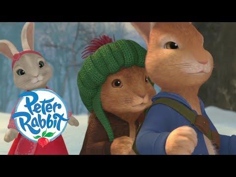 Peter Rabbit - Christmas Special | Cartoons For Kids