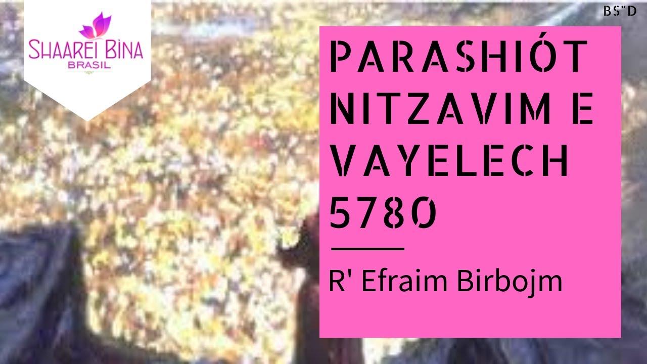Parashá Nitzavim-Vayelech 5780/ 2020