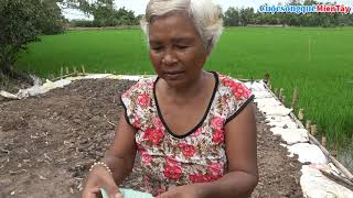 Quà Chị Thảo Trần, Cô HEIDI Thái tặng quà cho người nghèo   Cuộc Sống Quê Miền Tây 31/12/2018
