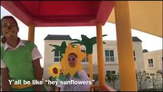 SISTER SUNFLOWERS - PHOTOSYNTHESIS (with lyrics)