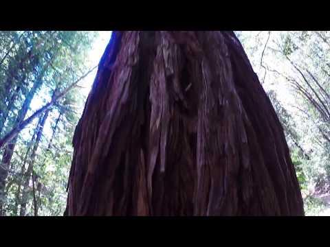 OM Center 2017 California Yoga and Adventure Retreat
