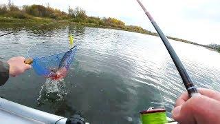 Щука Окунь на воблеры Рыбалка на Оке с лодки на спиннинг