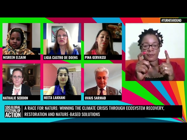 A Race For Nature: Winning Climate through Ecosystem Recovery, Restoration & NBS (Spanish)