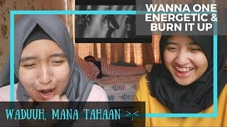 Video Wanna One - Energetic & Burn it Up// MV Reaction download MP3, 3GP, MP4, WEBM, AVI, FLV Agustus 2017