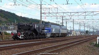 JR貨物 京都鉄道博物館特別展示車両 EF200&シキ800送込みを撮影(R1.11.12)