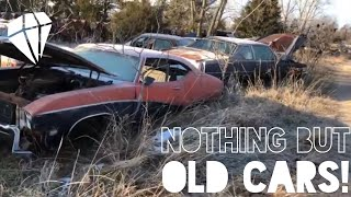 Coolest Junkyard ALL OLD CARS!