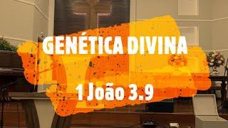 IP Arapongas - Pr Donadeli - GENÉTICA DIVINA -  15-11-2020