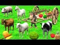Funny Monkey Feeding to Farm Animals with Wooden Cart Toys - Learn Domestic Animals Cartoon for Kids