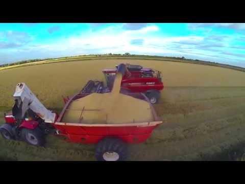 1. Meet the Australian Rice Grower