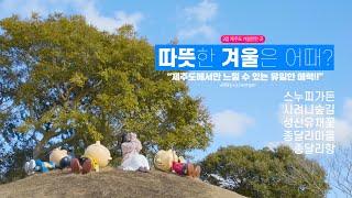[여행영상] 제주도하면 봄, 여름, 가을이라고요? ✈여…