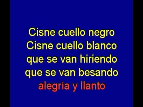 Cisne  Cuello Negro  -   Basilio -  karaoke   Tony Ginzo