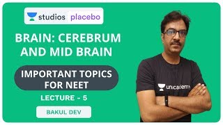 L5: Brain - Cerebrum and Mid Brain | Most Important Topics for NEET | Pre-Medical - NEET/AIIMS