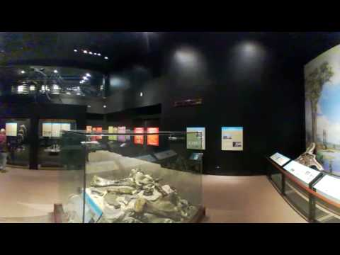 Museum of the Rockies 360 Video on LG 360