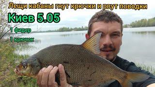 Активный клев крупного леща на Днепре на границе Киева ловля леща на фидер 2020