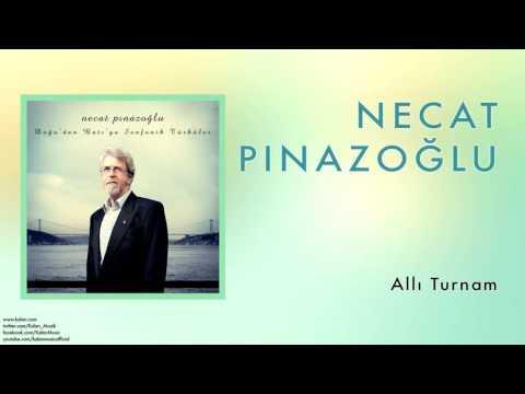 Necat Pınazoğlu - Allı Turnam [ Doğu'dan Batı'ya Senfonik Türküler © 2013 Kalan Müzik ]