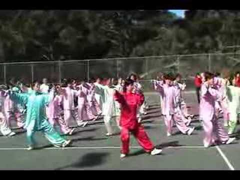 Tai Chi 24 Form Style