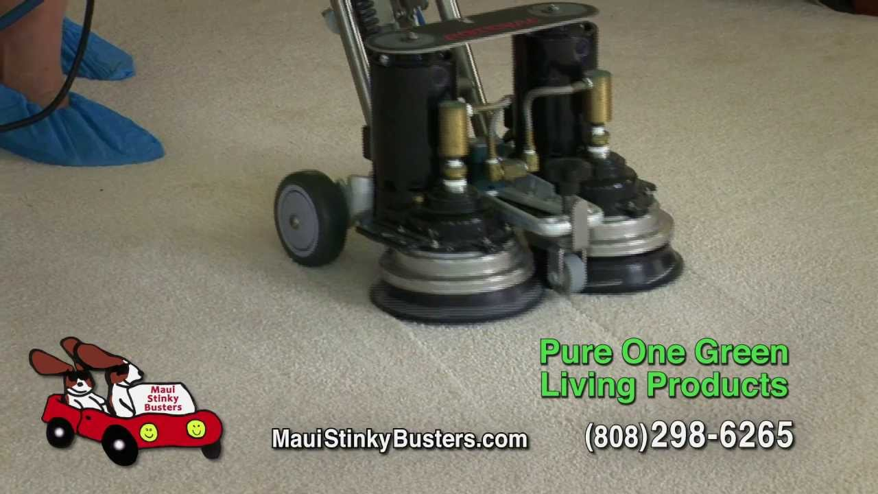 Maui Carpet Cleaning Stain Removal Maui Stinky Busters Image - Carpet one maui