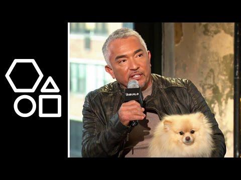 Dog Whisperer with Cesar Millan | AOL Build