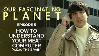 How To Understand Your Meat Computer a.k.a. The Brain [with Demetri Martin]