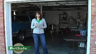 Petsafe Wireless Pet Containment System, Pif-300 By Petsafe